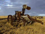 Discarded Antique Farm Harvester Machinery Rusting in a Field at Dawn  Australia