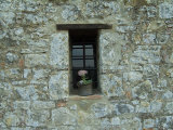 Flower Pot in the Window of a Tuscan Villa  Tuscany  Italy