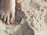Foot with Pink Toenails in the Sand on a Beach  Hawaii