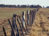 Falling Down Farm Fence During Drought Eludes to Hardship  Australia