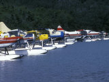 Floatplanes on Naknek Lake for Bear Viewing at Katmai National Park  Alaska