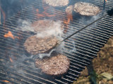 Hamburger Cookout in Grand Island  Nebraska