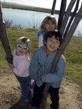 Kids Climb a Tree near the Airport  Washington  DC