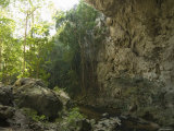 Inside Looking Out of the 65 Foot High Rio Frio Cave Entrance  Belize