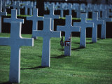 Crosses Mark the Graves of American Servicemen in Cambridge  England
