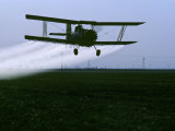 Crop Duster Flies over a Field  California