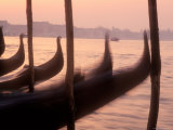 Gondolas at Sunset on the Grand Canal  Venice  Italy