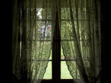 Looking Out the Window of a Log Cabin Through Lace Curtains