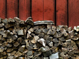 Large Stack of Fire Wood Piled Next to a Red Barn Wall