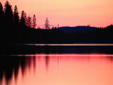 Dramatic Picture of a Forest-Edged Lake under a Pinkish-Orange Sky