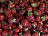 Local Strawberries for Sale at a Road-Side Market