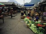 Market Scene in Bai Chay near Halong Bay  Vietnam