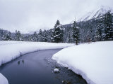 Rock Creek and Fresh Snow in the Sierra Mountains  California