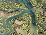 Ria Formosa Lagoon is a Series of Inlets and Barrier Islands