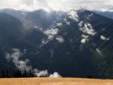 Olympic Mountains from Hurricane Ridge  Washington