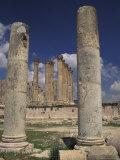 Temple of Artemis in Jaresh  Jordan