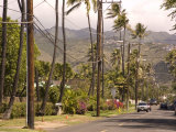 Residential Neighborhood in Honolulu  Hawaii