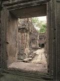 Temples of Angkor  Ta Prohm  Cambodia