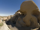 Skull Rock in Joshua Tree National Park  California