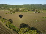 Napa Valley  USA: Hot Air Balloon Flying over Vineyards  California