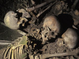 Skeletons of Escaping People Found in the Arcades of Old Harbour in Herculanium  Italy