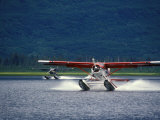 Two Floatplanes Landing on Robe Lake near Valdez  Robe Lake  Alaska