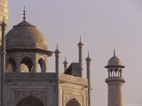The Taj Mahal Marble Domes with Pietra Dura Inlay and Minaret at Dawn  Agra  India