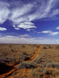 Sports Utility Vehicle Parallel Wheel Tracks over Vast Red Sand Dunes  Australia