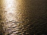 The Sun Reflects Off Rippling Water  Alaska