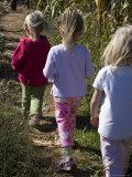 Siblings Walk Through a Corn Maze