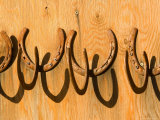 Used Horseshoes Nailed to a Barn Door Used for Hanging Things  Colorado