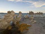Tofa Formations on the Shore of Mono Lake  California