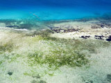 The Crystal Blue Water and Shallow Reefs of the Pemba Channel
