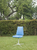 Single Blue Chair Sitting in Yard  California