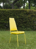 Single Yellow Chair Sitting in Yard  Santa Barbara  California