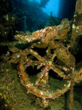 Wreck of Liberty  An American Cargo Ship Sunk by Japanese in 1942  Bali  Indonesia