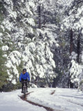 Woman Mountain Biking in the Snow