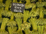Wild Aspargus for Sale in Market  Paris  France