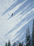 Skier Glides Across a Pine-Shadowed Slope at Deer Valley Resort  Utah