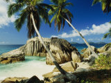 Scenic View of the Tropical Island of la Digue in the Seychelles