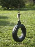 Tire Swing on a Farm in Greenleaf  Kansas