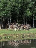 Wagon Wheels Reflecting in a Pond at Chena Hot Springs  Alaska