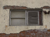 Window and Brick Wall with Peeling Plaster  Brooklyn  New York