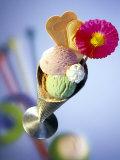 Strawberry  Pistachio & Chocolate Ice Cream  Cream & Wafers