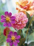 Cosmos  Dahlias and Roses (Fabric Flowers)