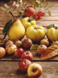 Autumn Fruits: Quinces  Medlars  Rowan Berries  Apples & Pears