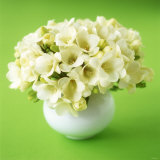 Bouquet of White Freesias in Spherical Vase