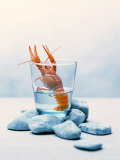 Freshwater Crayfish in a Glass of Water
