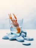 Freshwater Crayfish in a Glass of Water Papier Photo par Tim Thiel