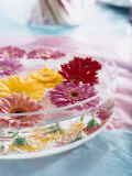 A Bowl of Flowers Floating in Water (Table Decoration)